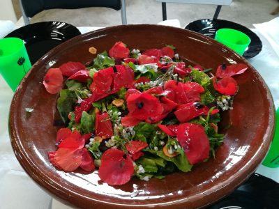 foto-1wild-salad