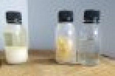 photo-résine-colophane-essence